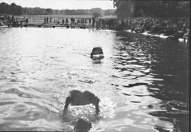 Zeitungslesen-Schwimmener, Garlstorfer Schwimmbad, Foto: Kathrin Schröder